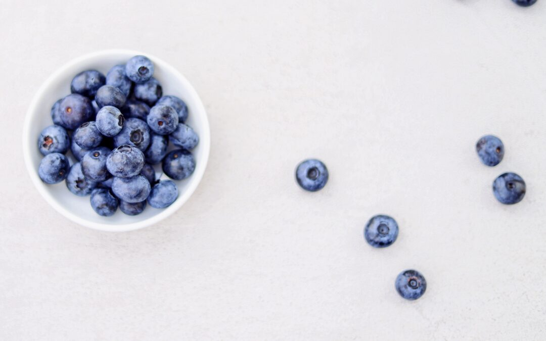 The Power of Wild Blueberries