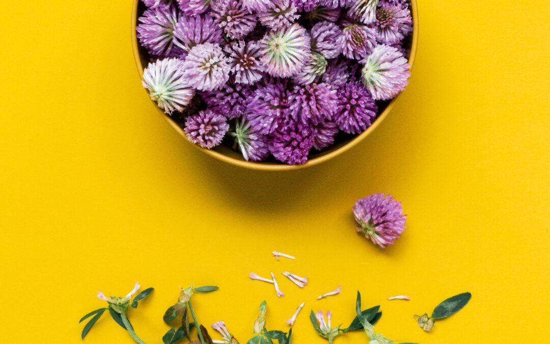 Sustainable Herbs